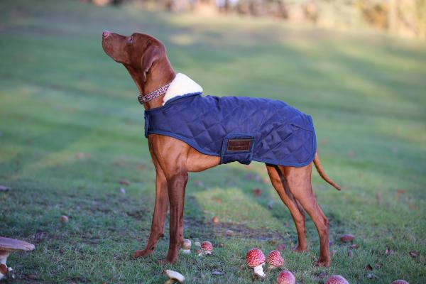 Kentucky – Manteau pour Chiens
