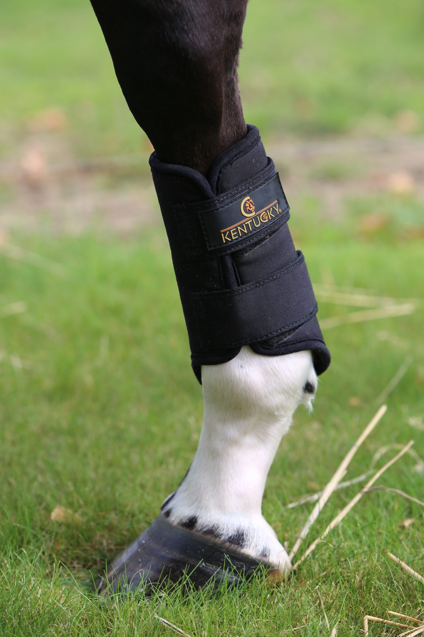 Kentucky – 3D Spacer Turnout Boots