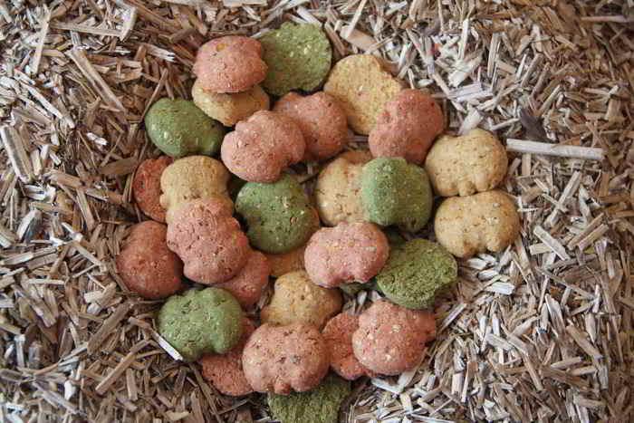 Galo'Snack – Design Pommes
