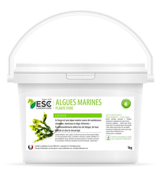 Esc Laboratoire – Algues marines 1kg
