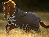 Horseware – Amigo bravo 12 high neck – 250g