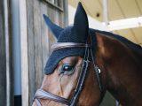 Kenticky – Bonnet Wellington Sparkling