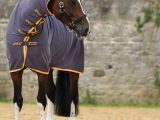 Horseware – Amigo® All-In-One Jersey Cooler ( séchante )