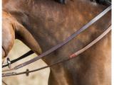 HFI – Rênes allemandes cuir corde