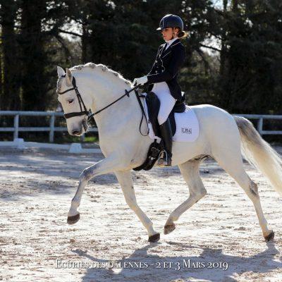 Emilie Frontin – Cavalière / Coach de Dressage indépendante