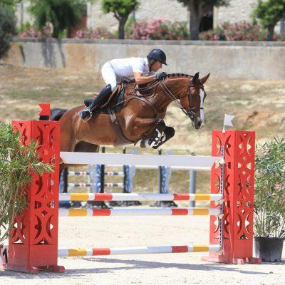 Alexis ROQUES – Cavalier pro et coach de jumping et complet