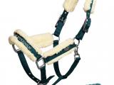 Equestrian Stockholm – Licol Emerald